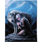 Small Protector Canvas Picture by Anne Stokes
