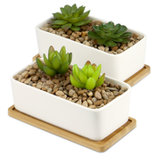 Ceramic Planter & Bamboo Base | M&W x2 Rectangular New