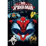 Marvel - Spider-Man Heroes Maxi Poster
