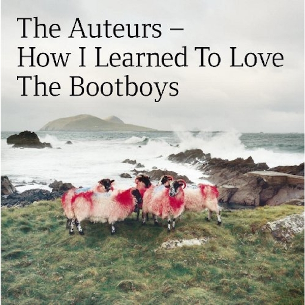 The Auteurs - How I Learned To Love The Bootboys Vinyl