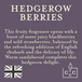 Hedgerow Berries (Superstars Collection) Tin Candle - Image 3