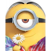 Minions Limited Edition Collectors Case DVD