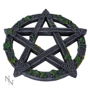 Wiccan Pentagram Wall Plaque
