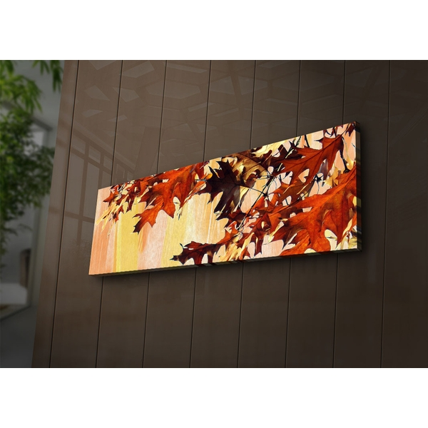 3090?ACT-54 Multicolor Decorative Led Lighted Canvas Painting
