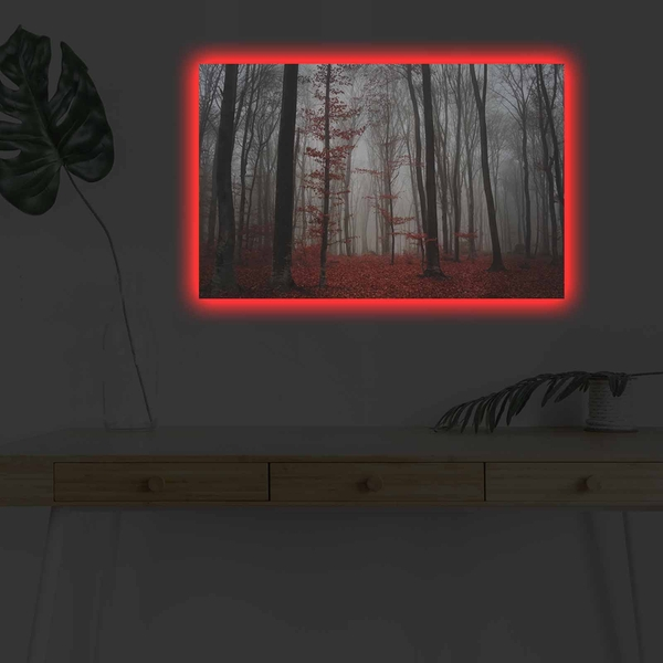4570DHDACT-106 Multicolor Decorative Led Lighted Canvas Painting