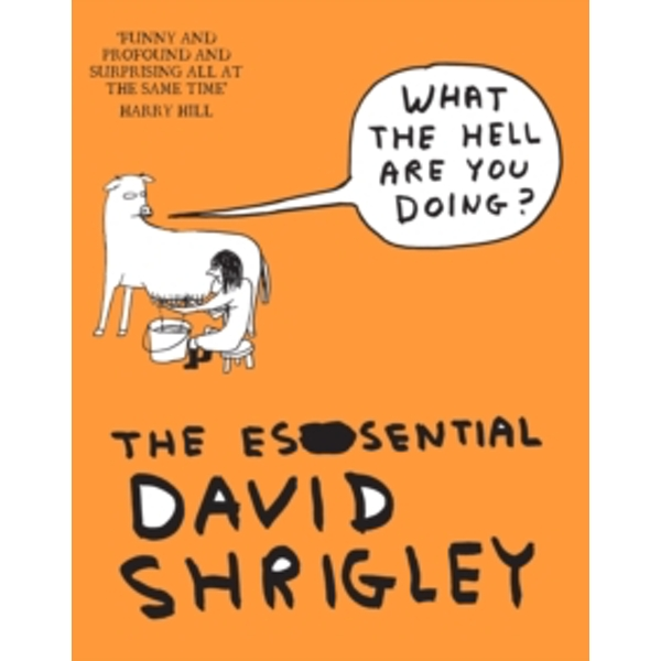 What The Hell Are You Doing?: The Essential David Shrigley by David Shrigley (Paperback, 2012)