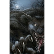 Grimm Fairy Tales Presents: Vampires and Werewolves