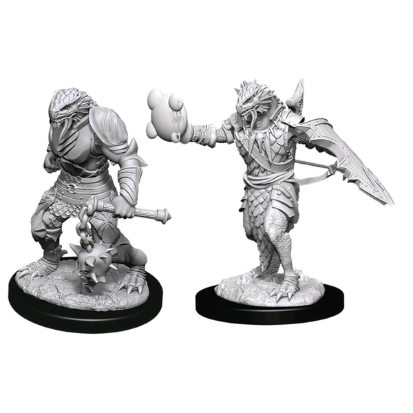 Dungeons & Dragons Nolzur's Marvelous Unpainted Miniatures (W11) Male Dragonborn Paladin