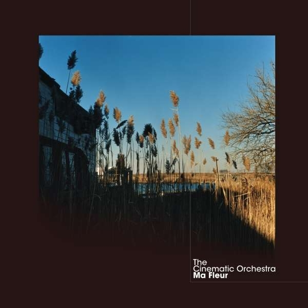 The Cinematic Orchestra - Ma Fleur CD