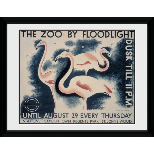 """Transport For London The Zoo By Floodlight 12"""" x 16"""" Framed Collector Print"""