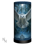 Awaken Your Magic Owl Lamp