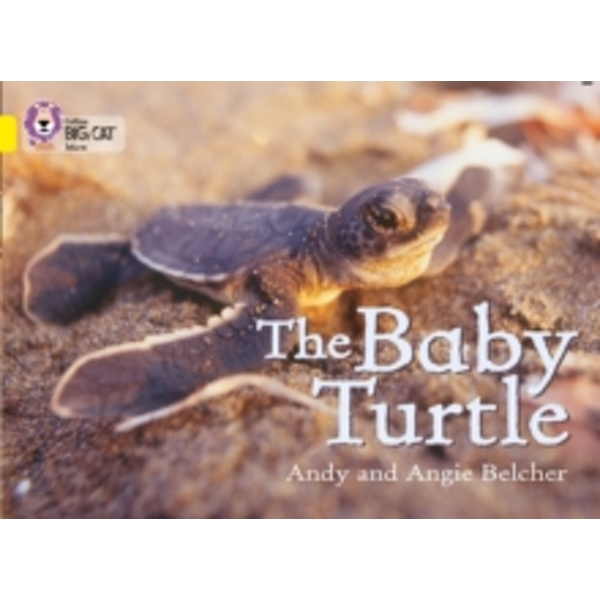 The Baby Turtle : Band 03/Yellow
