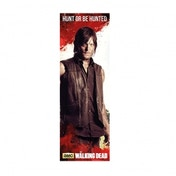 The Walking Dead Daryl Poster