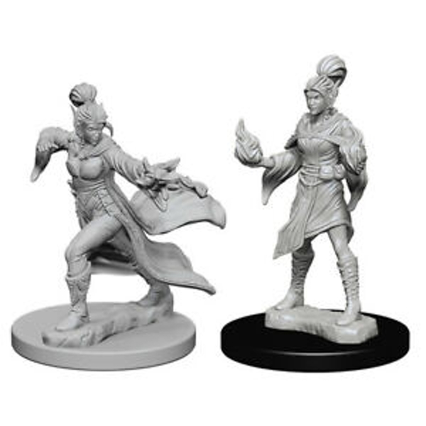Pathfinder Deep Cuts Unpainted Miniatures (W1) Elf Female Sorcerer