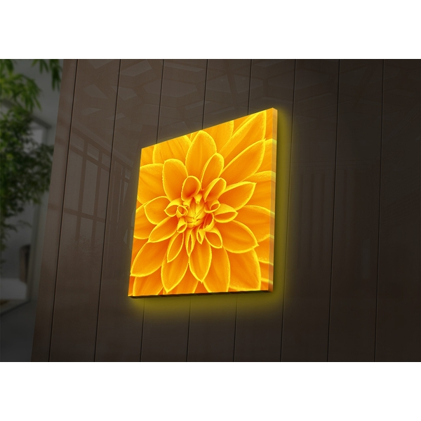 4040DACT-31 Multicolor Decorative Led Lighted Canvas Painting