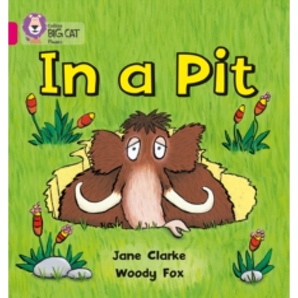 In a Pit: Band 01A/Pink A by Jane Clarke, Woody Fox (Paperback, 2010)
