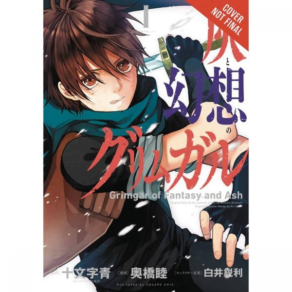 Grimgar Of Fantasy & Ash  Volume 1