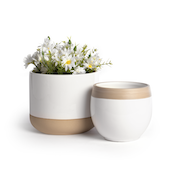 Indoor Plant Pots - Set of 2 | M&W