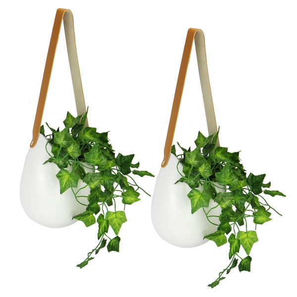 Hanging Wall Planters - Set of 2 | M&W - Image 1