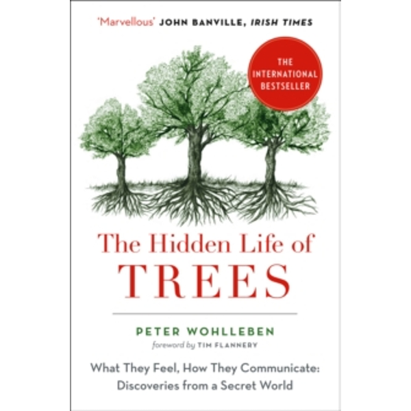 The Hidden Life of Trees : The International Bestseller - What They Feel, How They Communicate