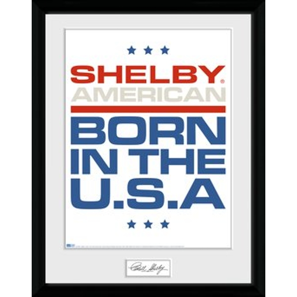 Shelby - Born In The USA Collector Print