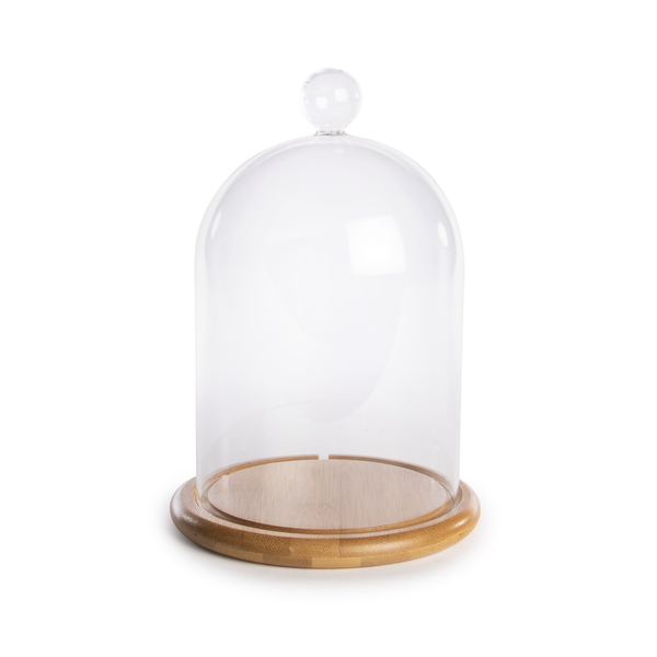 Glass Cloche Bell Jar | M&W Large