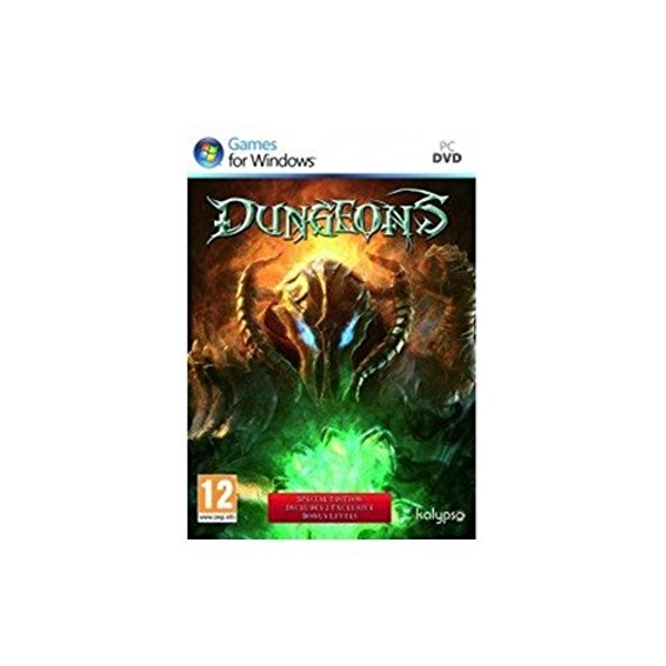 Dungeons Special Edition PC Game