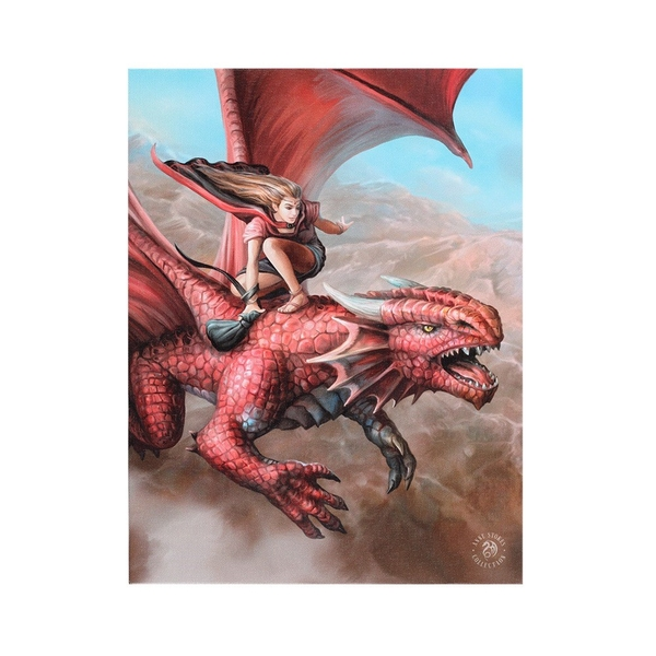 19x25 Sky Surfer Canvas by Anne Stokes