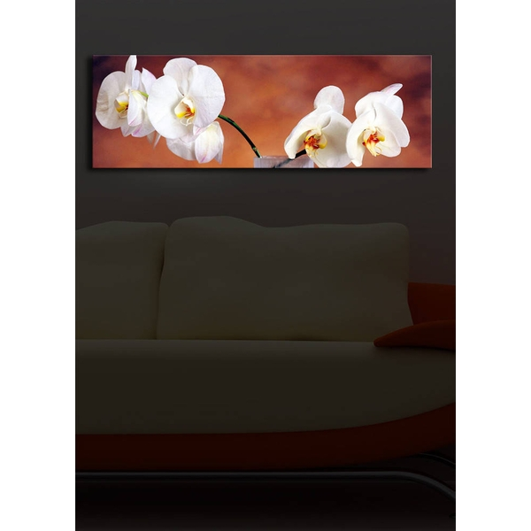 3090?ACT-19 Multicolor Decorative Led Lighted Canvas Painting