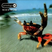 The Prodigy - The Fat of the Land CD