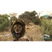 Cabelas Dangerous Hunts 2011 Game Xbox 360 - Image 3