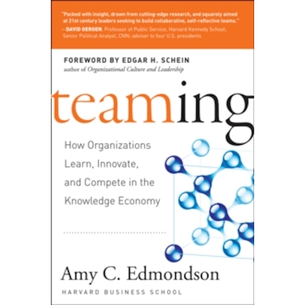 Teaming to Innovate by Amy C. Edmondson (Paperback, 2013)
