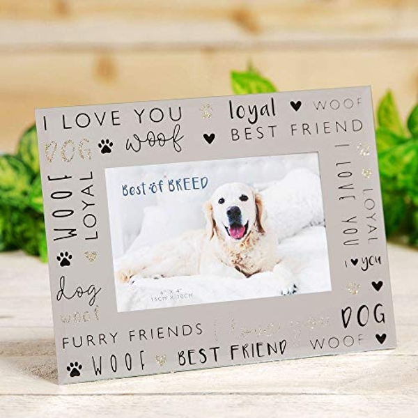 """6"""" x 4"""" - Best of Breed Glass Photo Frame - Dog"""
