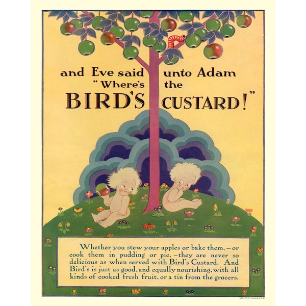 Vintage Metal Sign Retro Advertising Birds Custard, Adam & Eve