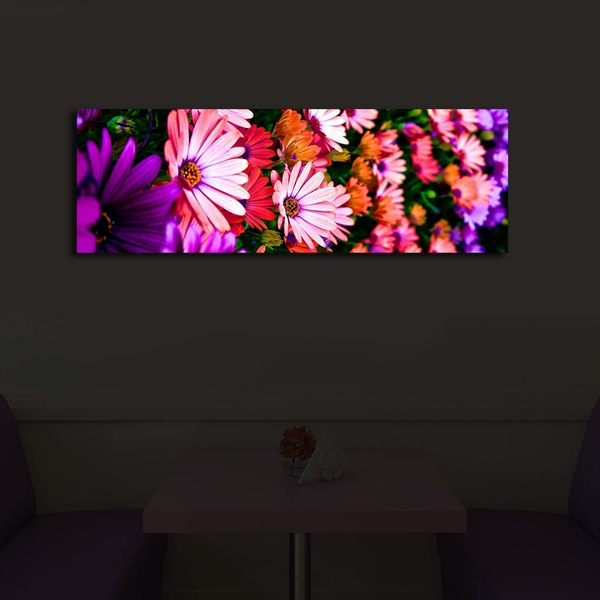 3090?ACT-43 Multicolor Decorative Led Lighted Canvas Painting