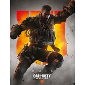 Call of Duty: Black Ops 4 - Ruin Canvas