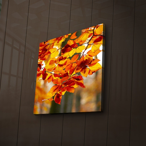 2828?ACT-47 Multicolor Decorative Led Lighted Canvas Painting