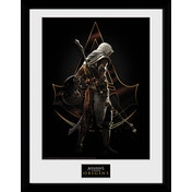Assassins Creed Origins Assassin Framed Collector Print