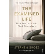 The Examined Life: How We Lose and Find Ourselves by Stephen Grosz (Paperback, 2014)