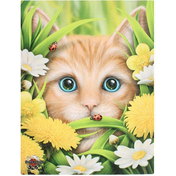 Small Summer Cat Canvas Picture by Linda Jones