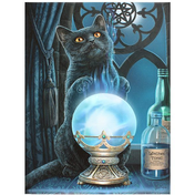 Small The Witches Apprentice Canvas by Lisa Parker