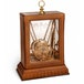 Hermione's Time Turner (Harry Potter) The Noble Collection Replica - Image 4