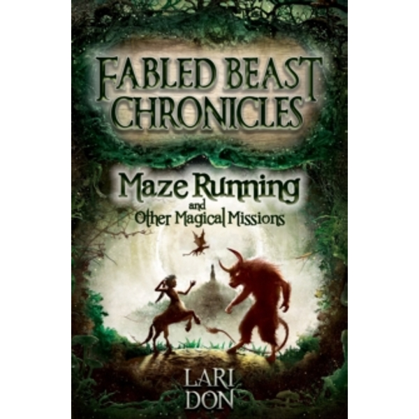 Maze Running and other Magical Missions by Lari Don (Paperback, 2014)