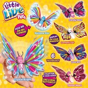 Little Live Pets Series 3 Butterflies Playset - Random Style