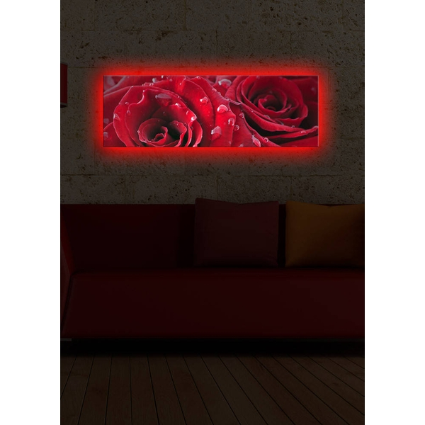 3090DACT-9 Multicolor Decorative Led Lighted Canvas Painting
