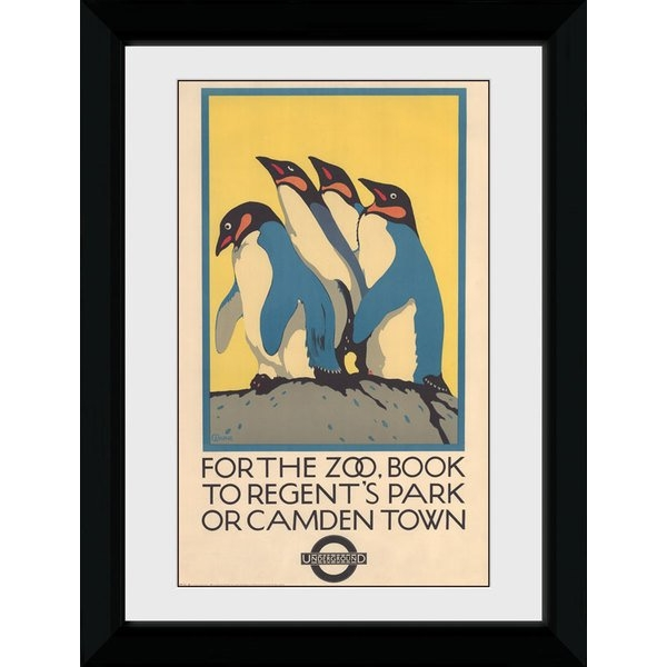 Transport For London Zoo 50 x 70 Framed Collector Print