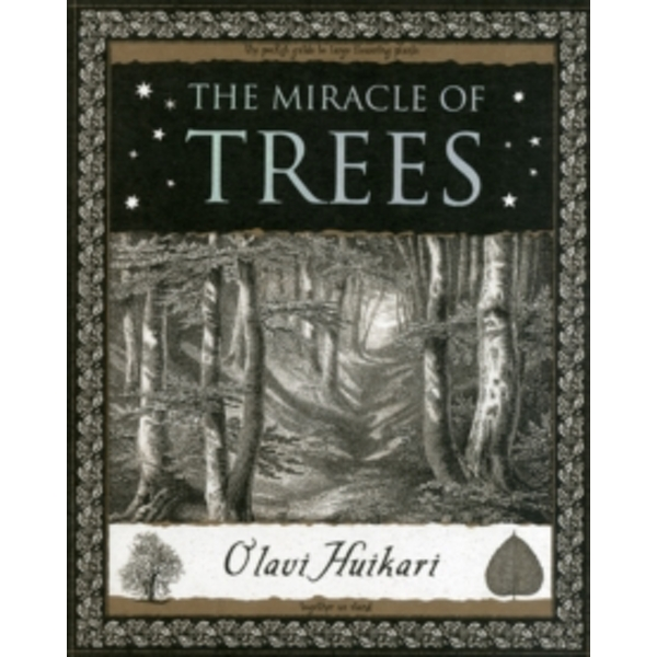 The Miracle of Trees by Olavi Huikari (Paperback, 2012)
