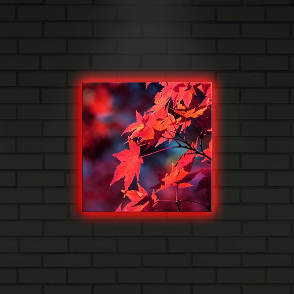2828DACT-7 Multicolor Decorative Led Lighted Canvas Painting