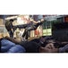 Sleeping Dogs Definitive Xbox ONE Game - Image 3