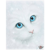 Small Winter Cat Canvas Picture by Linda Jones